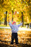 Playing with leaves. Little girl plays with fallen leaves Stock Images