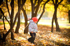 Playing with leaves_3. A little happy girl is running through the autumn park Stock Images