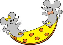 Playing mice Stock Images