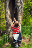 Playing near old tree Stock Photography