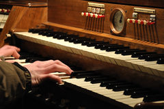 Playing organ. The keybord of organ with mans hands in a church Royalty Free Stock Photo