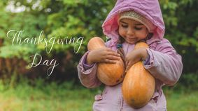Playing outdoors cute little girl holding a pumpkin. Harvest of pumpkins, the lovely girl and large pumpkins. Thanksgiving day stock photography