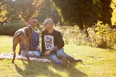 Playing in the park with their dog Royalty Free Stock Images