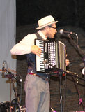 Playing the piano accordion. The piano accordion for example consists of 41 white keys and blacks (standard) arranged in a manner entirely similar to that of a Royalty Free Stock Photos
