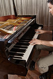 Playing piano Stock Photography