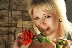 Playing with a red rose Stock Photography