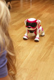 Playing with robodog Stock Photo