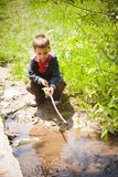 Playing in small pond Stock Image