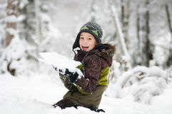 Playing in the snow Stock Photography