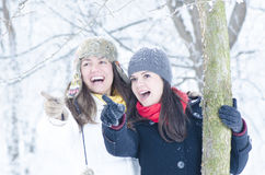 Playing in Snow Stock Photo