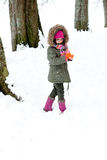 Playing with snow in the forest Stock Images