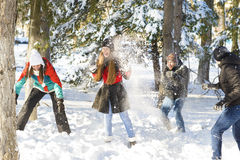 Playing in Snow Royalty Free Stock Photos