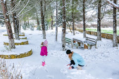 Playing in snow Stock Photography