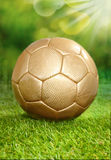 Playing soccer in summer Royalty Free Stock Photos