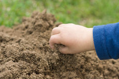 Playing with the soil. A child's hand playing with brown soil Stock Photography