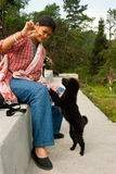 Playing with street dog. A tourist is playing with a baby street dog feeding biscuit at the view point benches at Loleygaon, India Royalty Free Stock Images