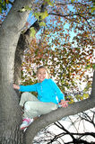 Playing in a tree Stock Image