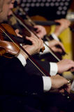 Playing violin. A night at the symphony concert - playing violins royalty free stock images