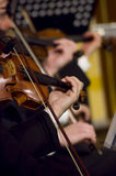 Playing violin. A night at the symphony concert - playing violins stock image