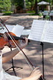 Playing Wedding March. Violinist on wedding ceremony, playing Wedding March Stock Images