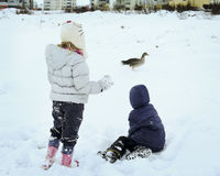 Playing in Winter. Two children playing with goose in winter Stock Images
