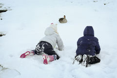Playing in Winter. Two children playing with goose in winter Royalty Free Stock Photo