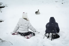 Playing in Winter. Two children playing with goose in winter Royalty Free Stock Images
