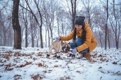 Playingin del perro del dogo francés el invierno con la mujer Imagen de archivo