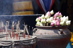 playnig света цветка предпосылки Стоковые Фотографии RF