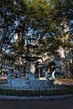 plaza Ουρουγουάη του Μοντεβίδεο ν constituci Στοκ Φωτογραφίες