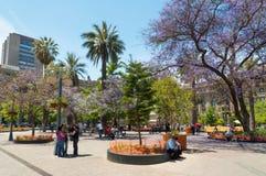 Plaza de阿玛斯,圣地亚哥-智利 库存图片