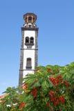 Plaza de la iglesia i Santa Cruz Royaltyfri Bild