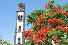 Plaza de la iglesia i Santa Cruz Arkivfoto