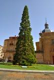 Plaza de los Anaya in Salamanca Stock Image