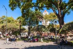 Plaza de Mayo Stockfotos