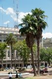 Plaza de Mayo. The plaza de Mayo is the main square in the Monserrat barrio of central Buenos Aires, Argentina Stock Image