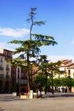Plaza del Mercado σε Logrono Λα Rioja, Στοκ Εικόνες