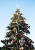 Plaza del treeon de la Navidad vieja en Praga Fotos de archivo libres de regalías