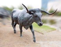 Plaza en bronze de pionnier de sculpture en boeuf, Dallas photographie stock libre de droits