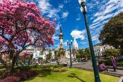 Plaza grande o quadrato di indipendenza fotografie stock libere da diritti