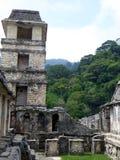 Plaza maya en el parque arqueológico de Palenque Imágenes de archivo libres de regalías