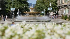 Plaza Moyua square in Bilbao decorated with beautiful flowers and fountain. Stock footage stock footage