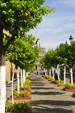 Plaza Tapatia leading to Hospicio Cabanas Royalty Free Stock Images