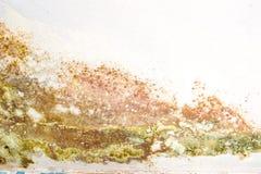 Pleśniowa ściana Zdjęcie Stock
