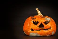 Pleśniowa bania Końcówka Halloweenowi świętowania Zbutwiała bania Pleśniowy jedzenie obraz stock