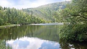 Plešné jezero. Plešné jezero with tree around which is devastated with insects Stock Photo