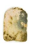 Pleśniowy chlebowy plasterek na bielu Fotografia Stock
