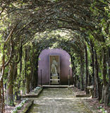 Pleached Allee Shenandoah Winchester VA. The pleached allee of crab trees is one of the signature spaces in the ornamental gardens of the historic Glen Burnie Royalty Free Stock Photography