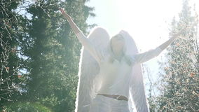 Pleas White Angel stock footage