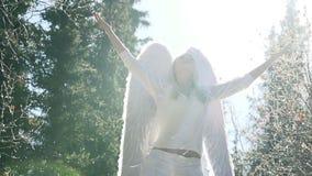 Pleas White Angel stock footage